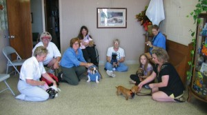 Dog Obedience Classes in Dallas TX