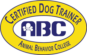 Certified Dog Trainer in Las Vegas