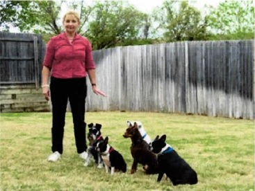 Advanced Dog Obedience Classes Fort Worth TX
